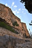 Вид на монастырь прп. Харитона Исповедника